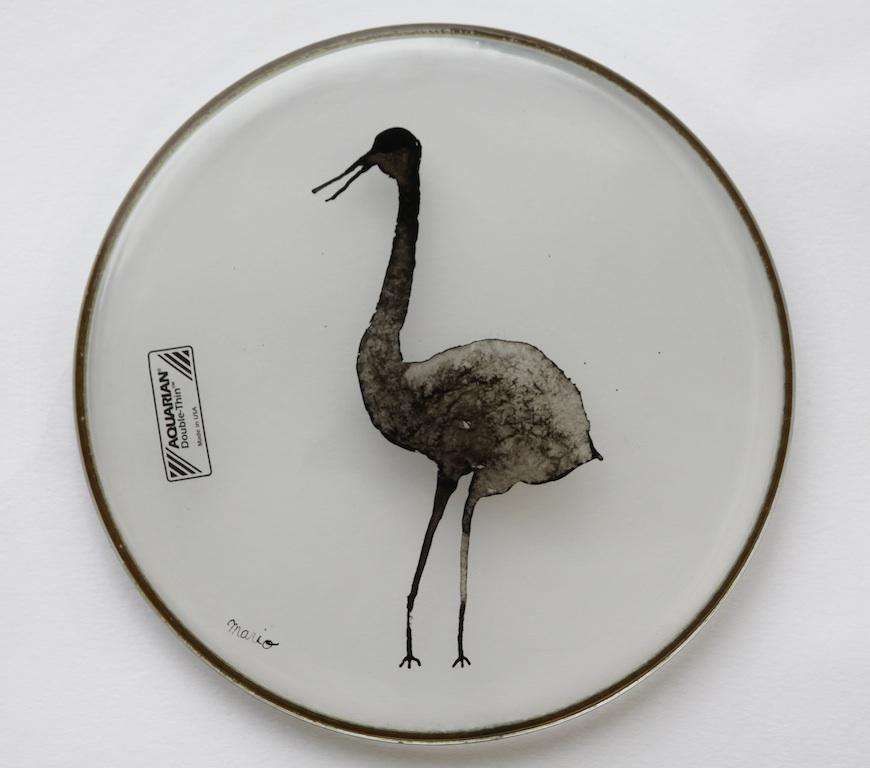 L oiseau arabe