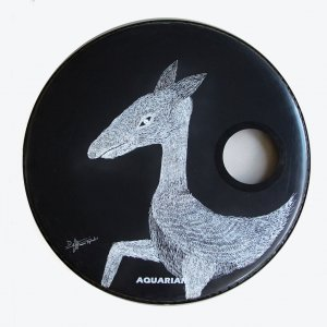 Animal ( Resonant bass drum head )