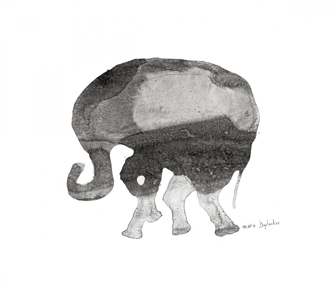le petit elephant - PRINT